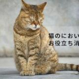猫にも歯磨きが必要?猫用の便利なデンタルグッズをご紹介