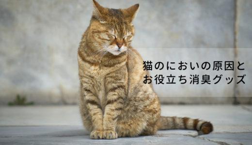 猫のニオイが気になる?猫のにおいの原因と役立つ消臭グッズを紹介