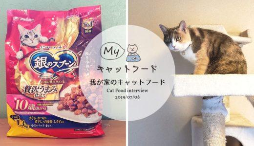 種類が豊富な「銀のスプーン」が主食のマリンちゃんのキャットフードインタビュー