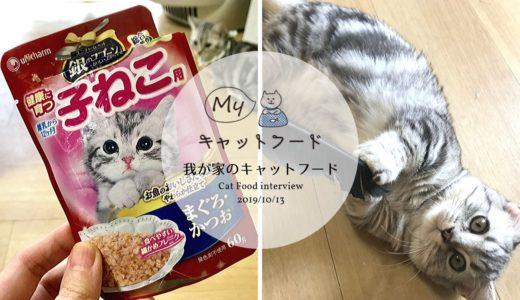 銀のスプーンのウェット子猫用の食いつきは?獅子丸くんのフードインタビュー