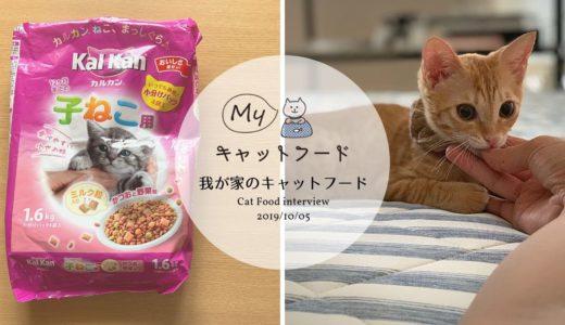 カルカンの子猫用キャットフードの魅力とは?生後4か月のモカちゃんのフードレビュー